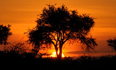 South Africa & Botswana Multi-Adventure Tour