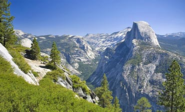 Yosemite California Tour
