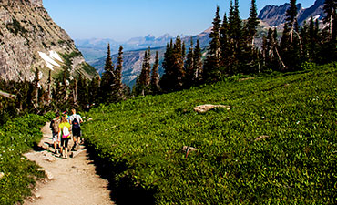Glacier Montana Walking Vacations
