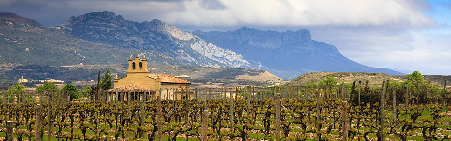 Winery in Rioja - French Pyrenees and Spain's Rioja Region Bike Tour
