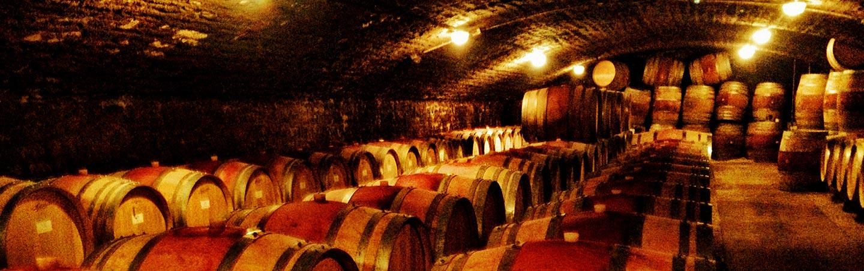 Wine Cave - Chablis & Burgundy Bike Tour