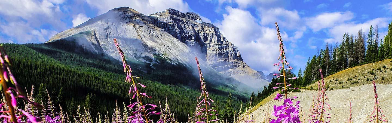 Canadian Rockies Family Bike Tour