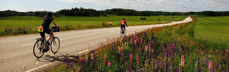 Sweden To Denmark Bike Tour Stockholm To Copenhagen ...