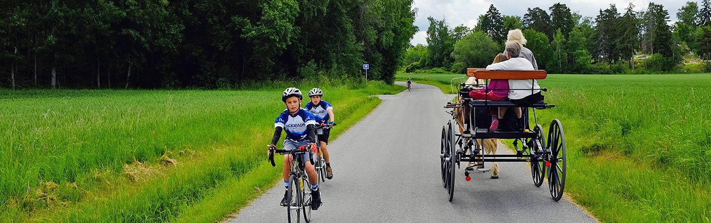 Biking on Backroads Stockholm to Copenhagen Family Bike Tour