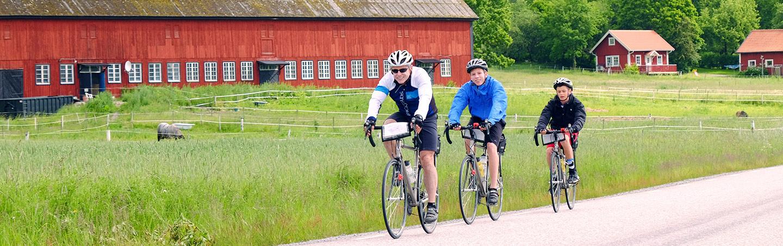 Backroads Stockholm to Copenhagen Bike Tour
