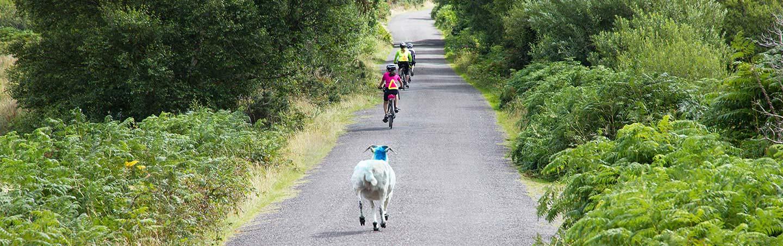 Ireland Family Bike Tours
