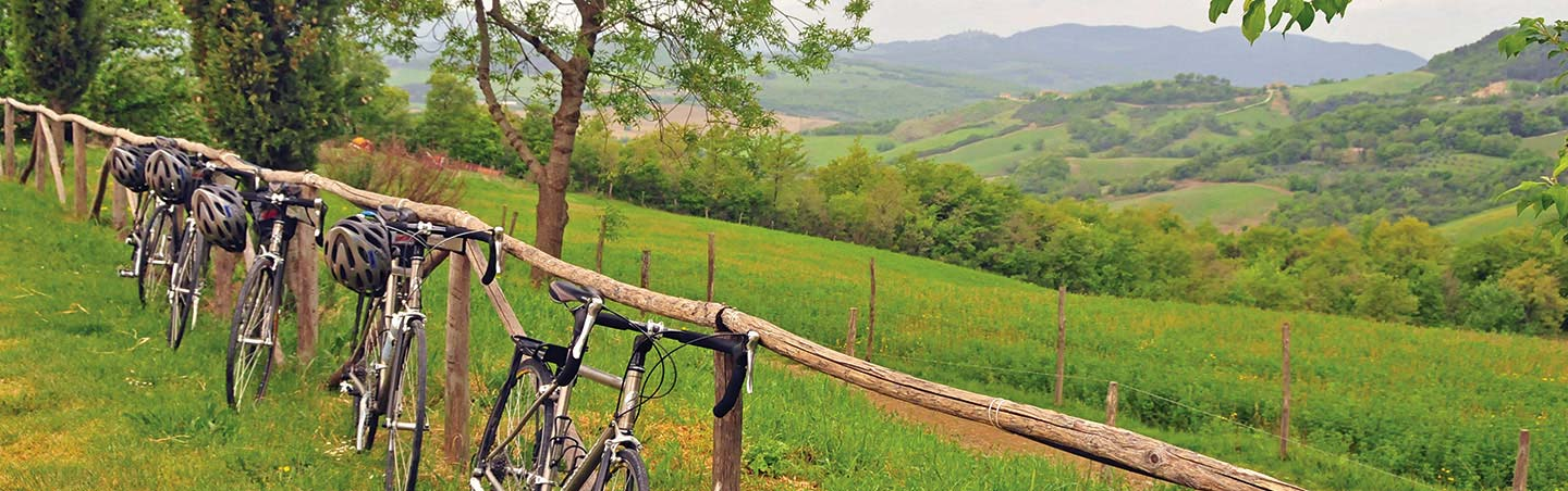 Bikes in Italy - Backroads Parma to Verona Bike Tour