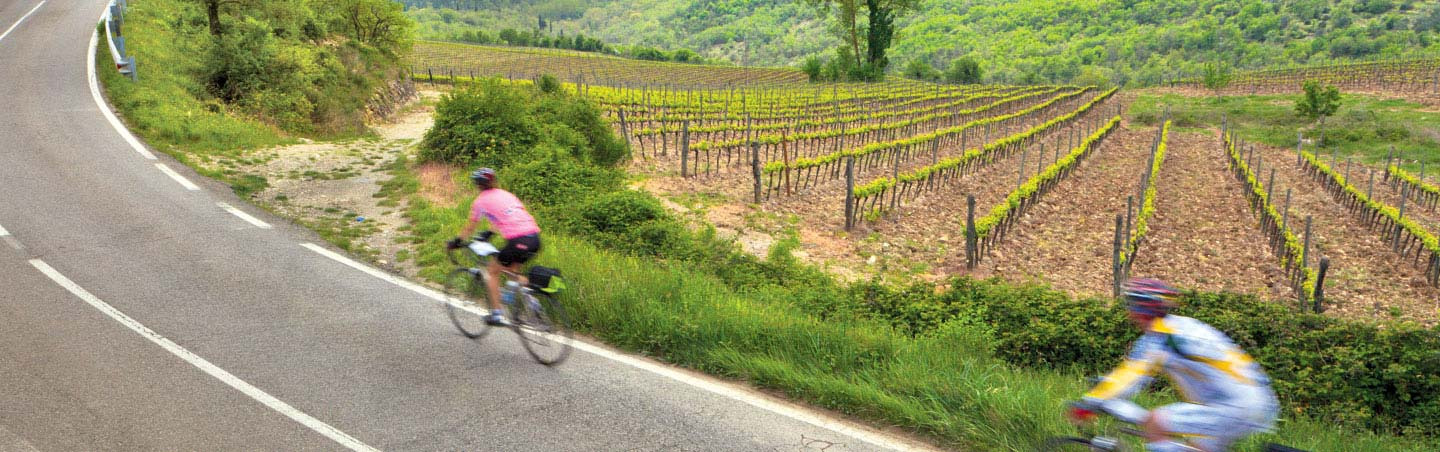 Cycling on Backroads Parma to Verona Family Breakaway Bike Tour