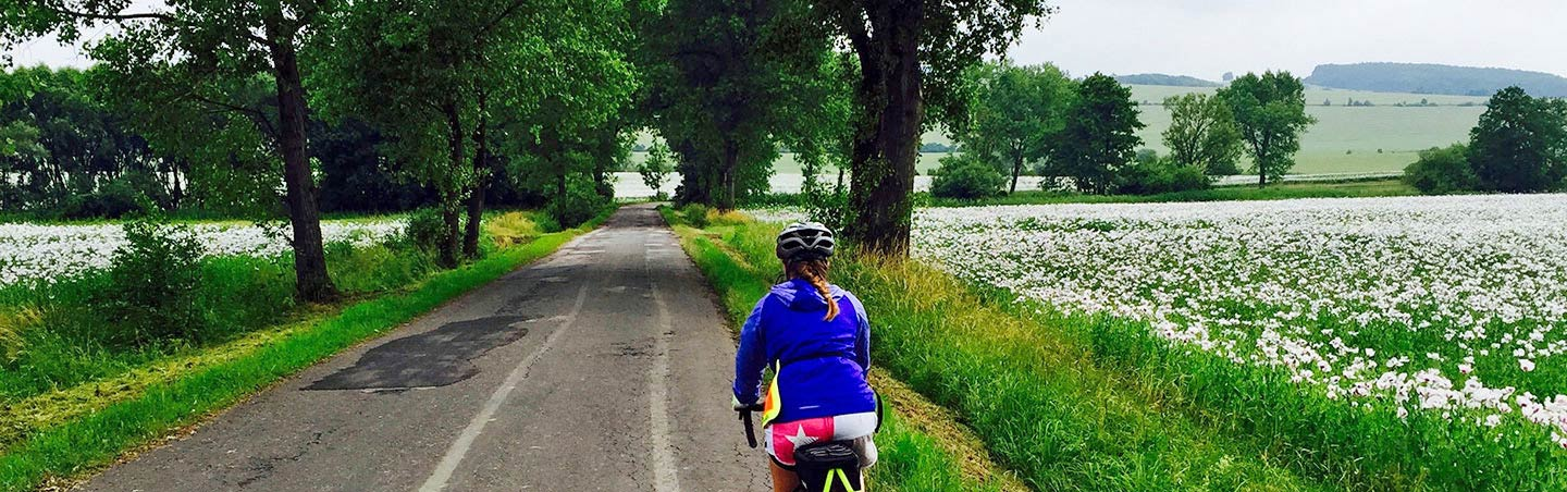 Biking in the Czech Republic and Austrian Countryside