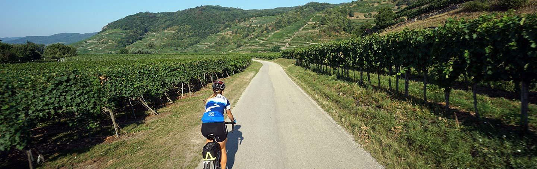 Fine Dining, Backroads Czech Republic & Austria Bike Tour