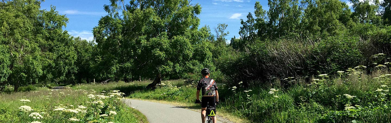 Biking on Alaska's Kenai Peninsula Family Multisport Adventure Tour