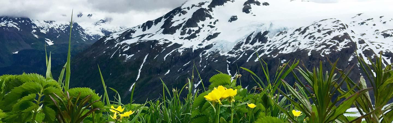 Backroads Alaska's Kenai Peninsula Family Multisport Adventure Tour