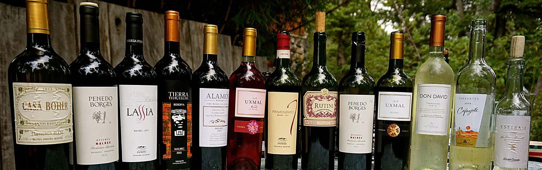 Wine - Argentina's Lake District Multisport Adventure Tour