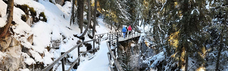 Canadian Rockies Winter Snow Adventure Tour