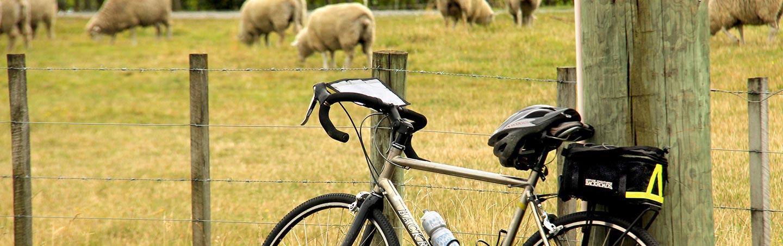 Biking on Backroads New Zealand Family Multisport Adventure Tour