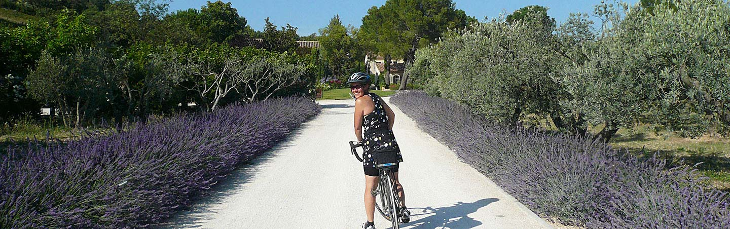 Biking on Backroads Provence Bike Tour