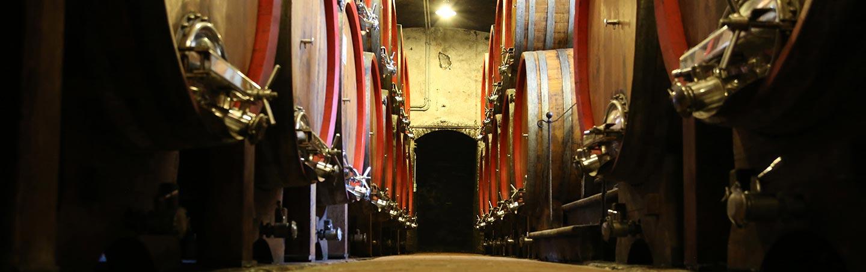 Wine barrels, Tuscany, Italy