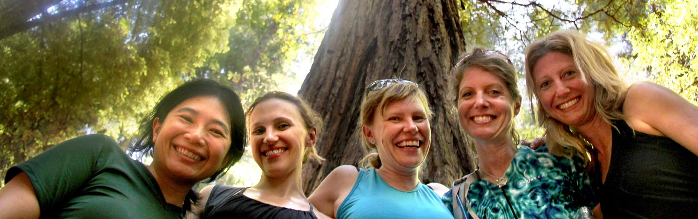 Hiking in the redwoods - Backroads California Wine Country Multisport Adventure Tour