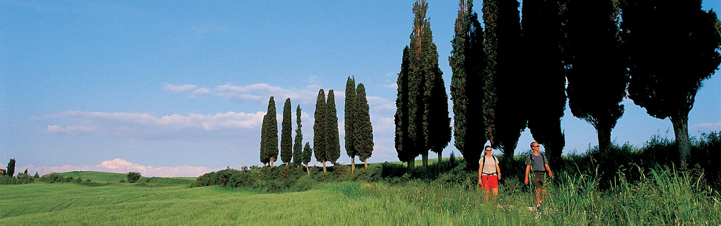 Backroads Tuscany Active Culinary Walking Tours