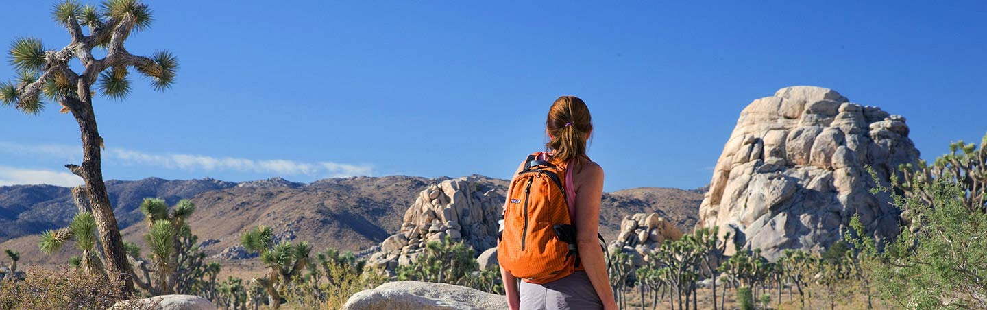 Hiking in Joshua Tree National Park - Backroads