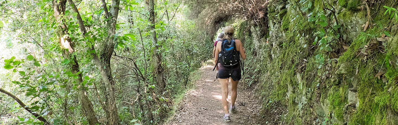 Hiking - Cinque Terre & Tuscany Walking & Hiking Tour