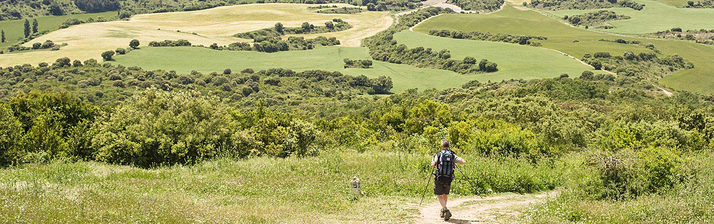 Camino de Santiago family hiking tours