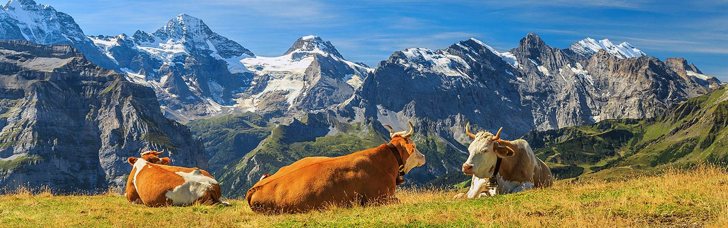 Bernese Oberland, Switzerland - Family Breakway Walking & Hiking Tour