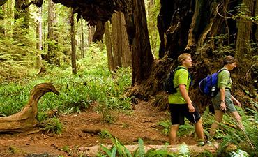 Redwood Empire Multisport Trip