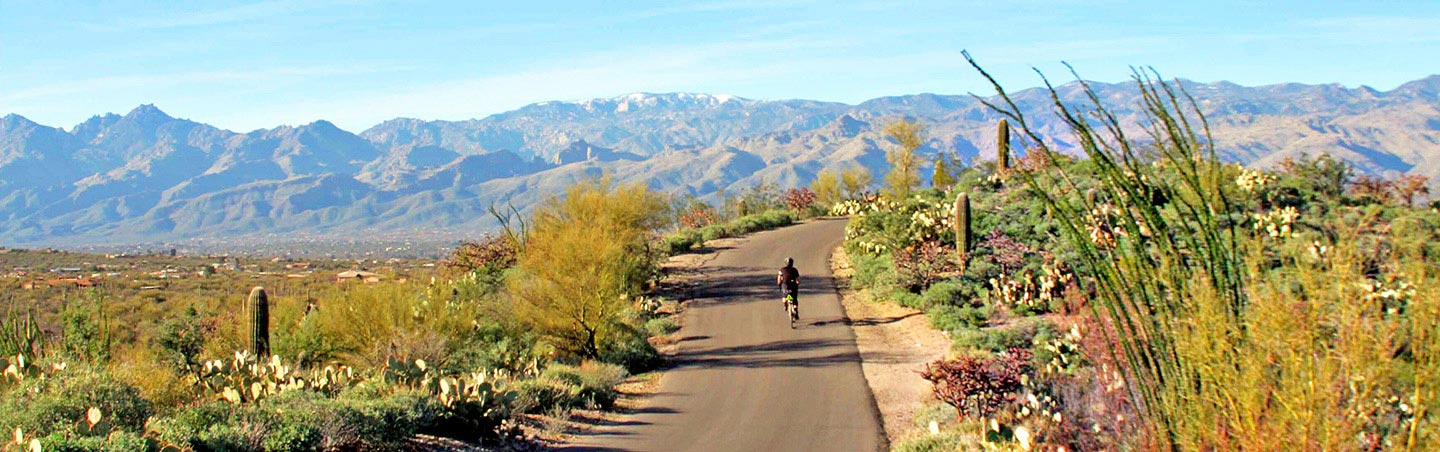 Biking on Backroads Tucson and Sonoran Desert Bike Tour