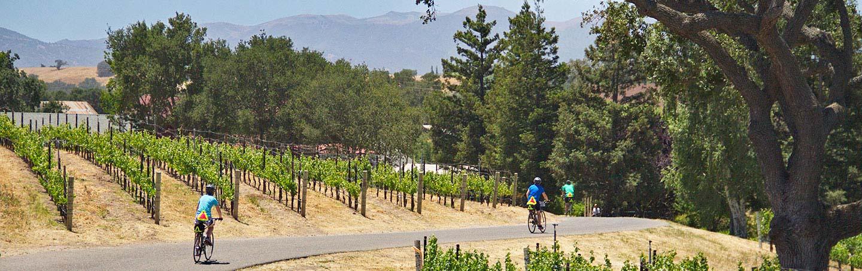 Biking on Backroads Carmel & Big Sur to Santa Barbara Wine Country Bike Tour
