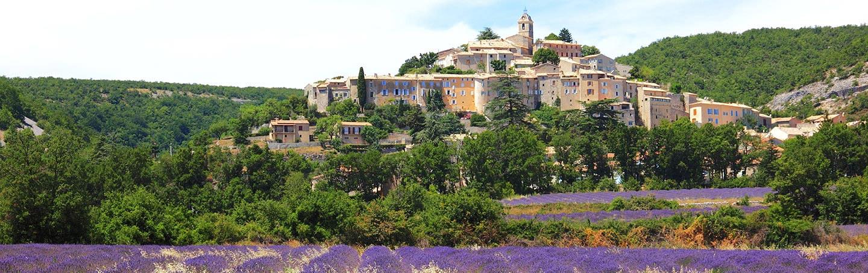 lavender field in Banon, France