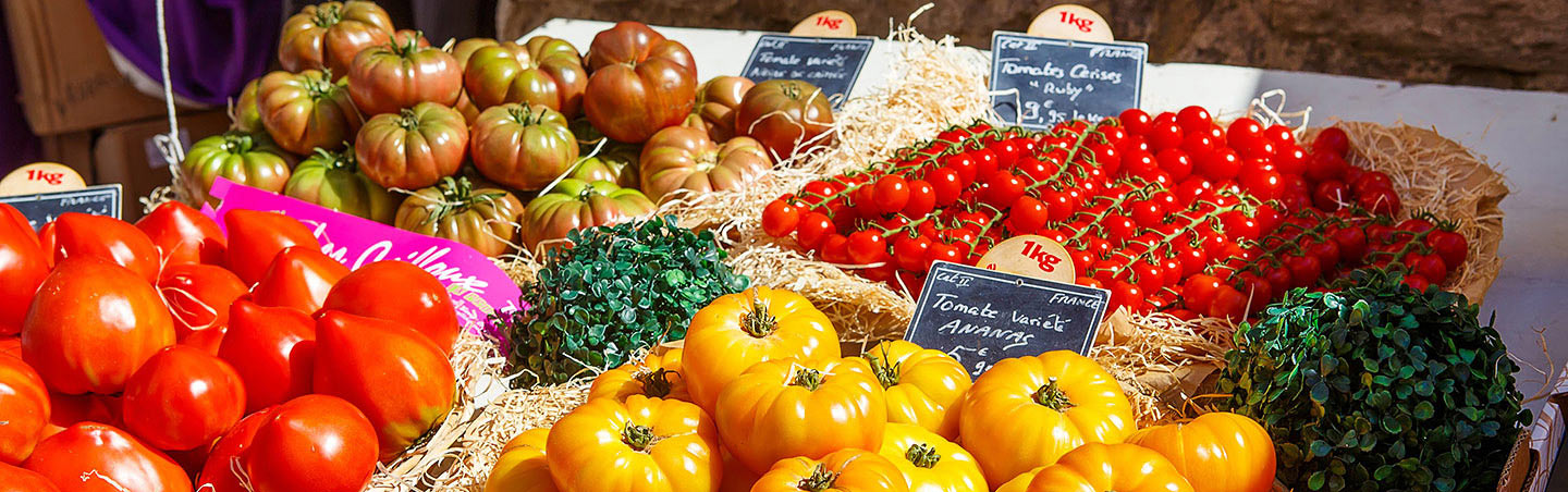 Tomatoes in Provence, France