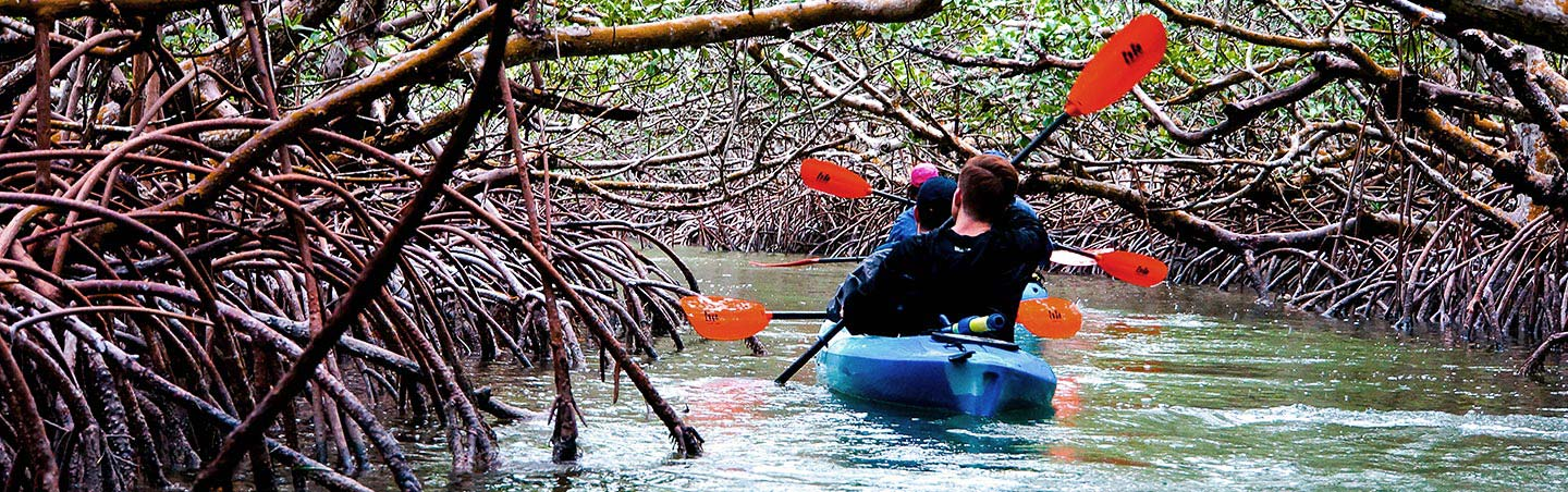 Kayaking - Backroads Everglades to Keywest Multisport Adventure Tour