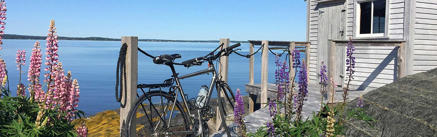 Road Bike - Backroads Nova Scotia Family Multisport Adventure Tour