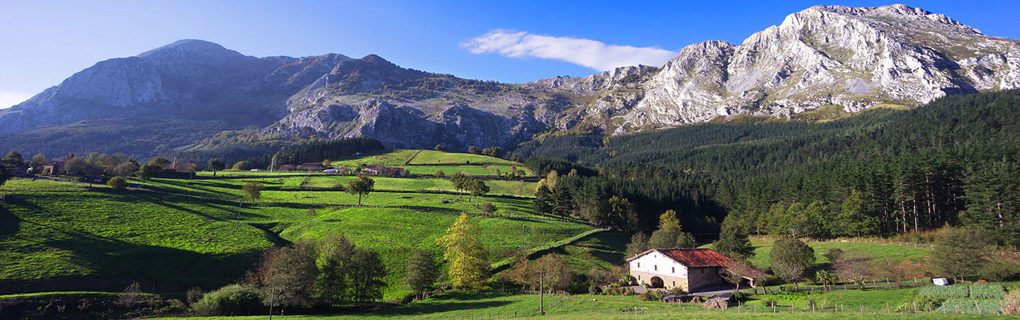 French Pyrenees & Spain's Rioja Region Walking Tour