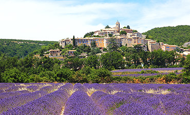 Provence Bike Tour Thumb