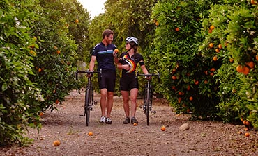 Santa Barbara and Ojai Biking thumb