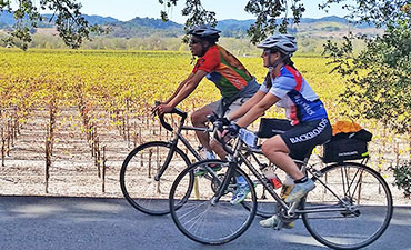 Wine Country Biking Vacations