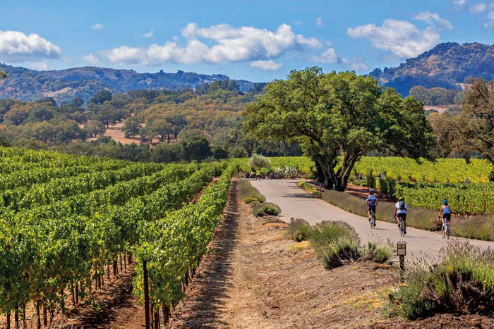 Sonoma County Wine Country Weekend Bike Tours