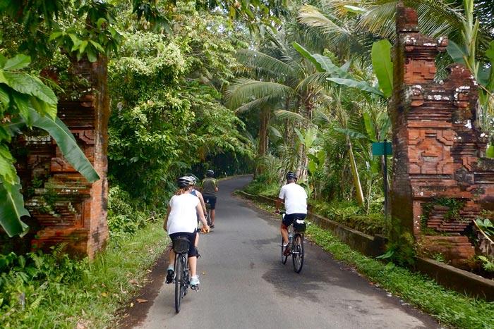 Bali Family Bike Tours - Older Teens & 20s