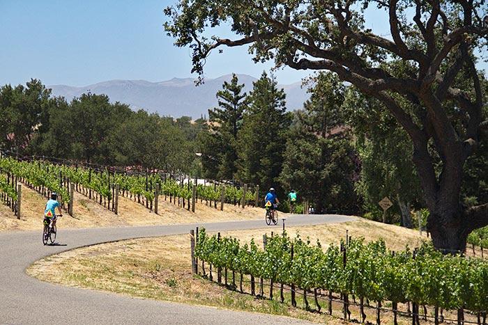 Backroads California Coast Bike Tour