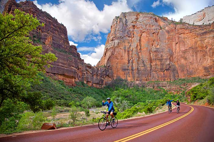 Zion Bike Tour