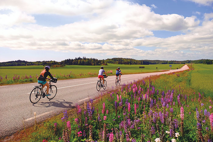 Biking on Stockholm to Copenhagen Family Breakaway Bike Tour