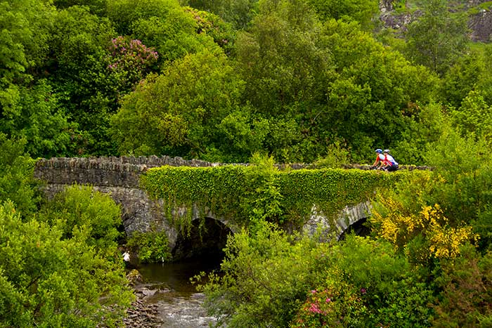 Cycling on Backroads Ireland Family Bike Tour