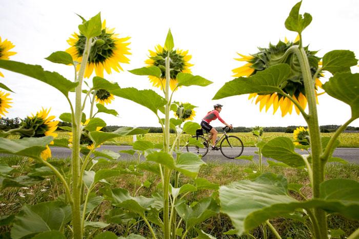 Backroads Loire Valley Family Breakaway Bike Tour