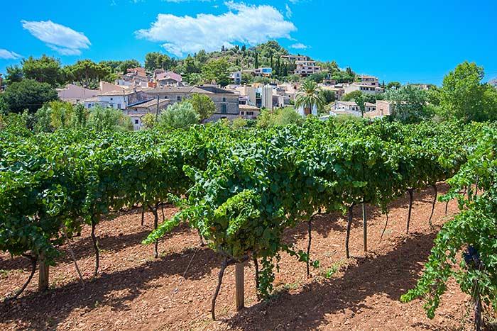 Village - Mallorca & Menorca Bike Tour