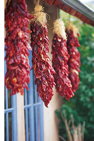 Red Chiles, Santa Fe & Taos Bike Tour