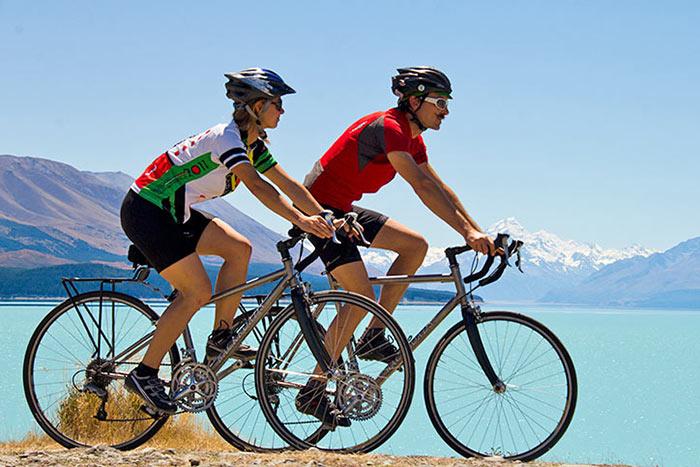 2bb386652 Sheep on Backroads New Zealand Bike Tour