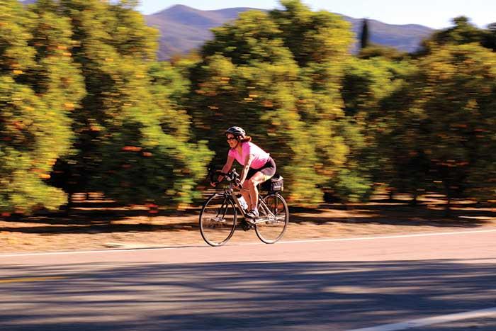 Biking on Backroads Santa Barbara to Ojai Bike Tour