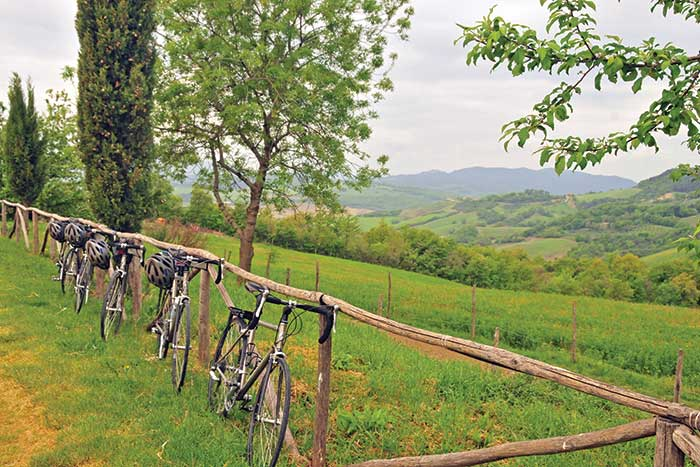 Backroads Parma to Verona Bike Tour